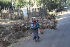 Ethiopian Woman walking down mountain with bundle