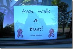 2011 04 - Avon Walk or Bust