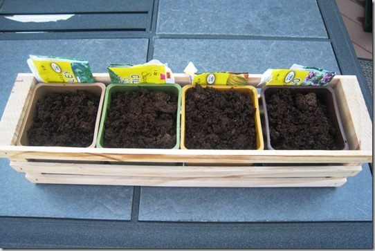 garden herb planter day 1